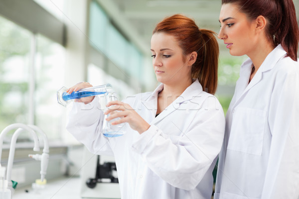 Cute scientists pouring liquid in an Erlenmeyer flask in a laboratory Stock photo © wavebreak_media