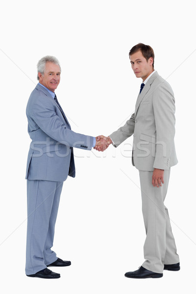 Side view of tradesmen closing a deal against a white background Stock photo © wavebreak_media