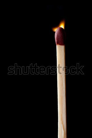 Close up of a match set on fire against a black background Stock photo © wavebreak_media
