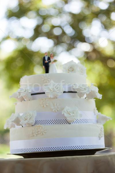 Estatueta casal bolo de noiva parque árvores Foto stock © wavebreak_media