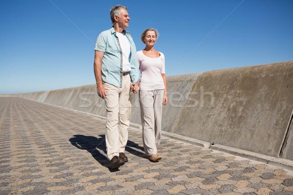 Happy senior couple walking on the pier Stock photo © wavebreak_media