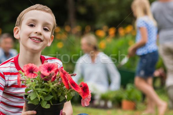 şedinţei ghiveci de flori familie iarbă Imagine de stoc © wavebreak_media