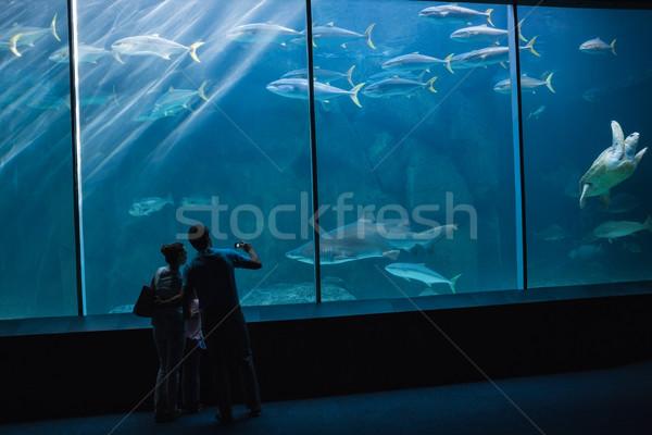 Szczęśliwą rodzinę patrząc ryb zbiornika akwarium miłości Zdjęcia stock © wavebreak_media