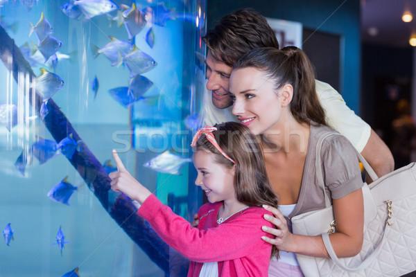 Сток-фото: счастливая · семья · глядя · рыбы · цистерна · аквариум · любви