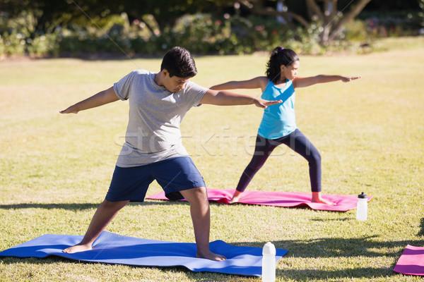 Kids practicing Virabhadrasana II on mat Stock photo © wavebreak_media