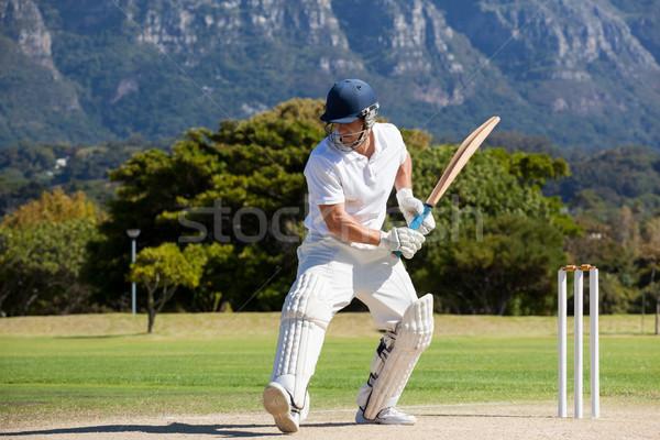 Teljes alakos krikett játékos játszik mező napos idő Stock fotó © wavebreak_media
