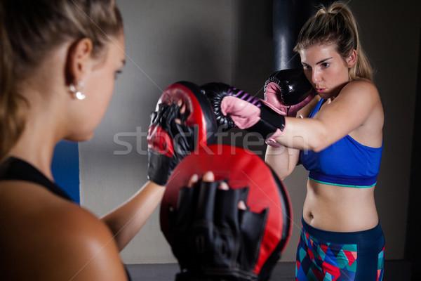 Kadın boks uygunluk stüdyo kavga Stok fotoğraf © wavebreak_media