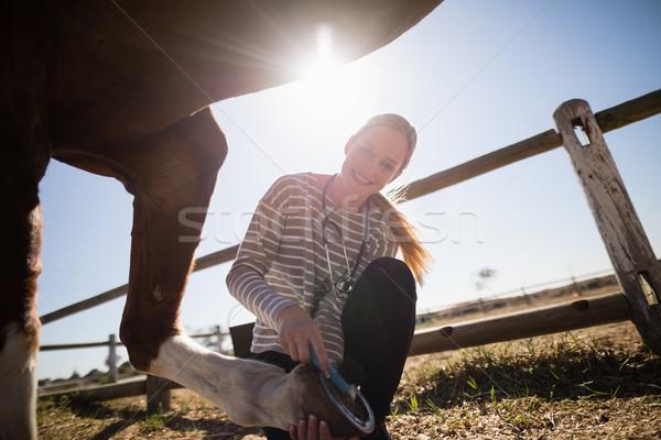 Smiling female vet attaching shoe on horse foot Stock photo © wavebreak_media