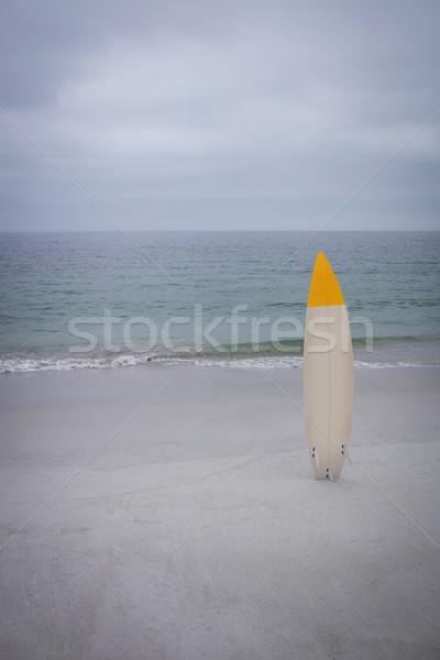 Tabla de surf buceo máscara playa deporte océano Foto stock © wavebreak_media