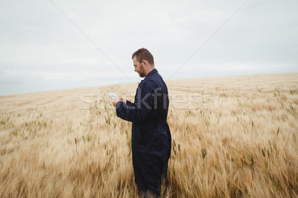 Foto stock: Agricultor · digital · tableta · campo · Internet