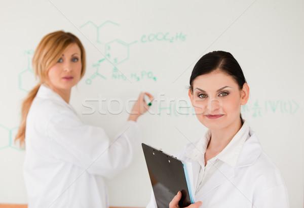Cute ученого формула помощник лаборатория лице Сток-фото © wavebreak_media