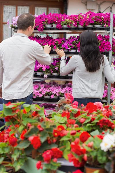 Para patrząc półka fioletowy kwiaty ogród Zdjęcia stock © wavebreak_media