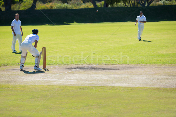 Cricket match at grassy field Stock photo © wavebreak_media