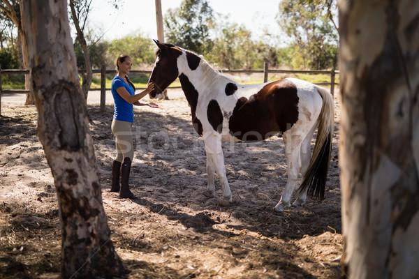 вид сбоку женщины жокей лошади Постоянный женщину Сток-фото © wavebreak_media