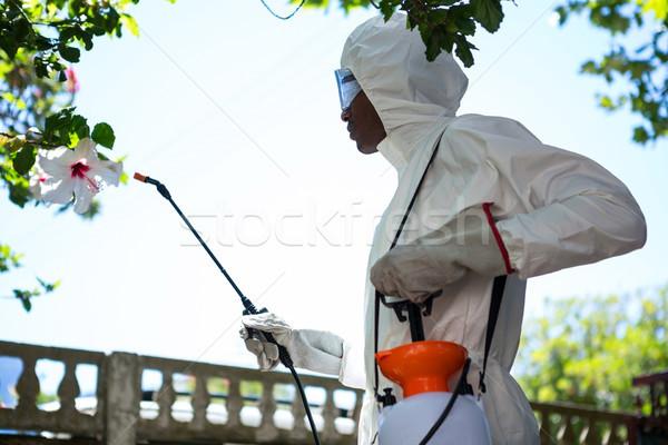 Hombre negro plantas seguridad Foto stock © wavebreak_media