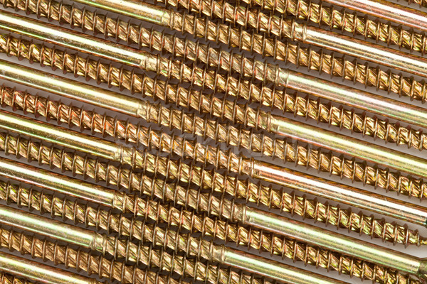 Close-up and sector of golden screws Stock photo © wavebreak_media