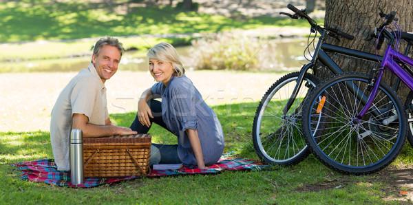 Pareja cesta de picnic parque retrato sonriendo amor Foto stock © wavebreak_media