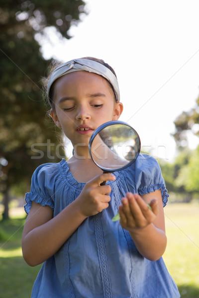 Nieuwsgierig meisje naar blad tuin Stockfoto © wavebreak_media