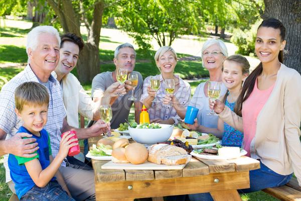 Happy family having picnic in the park  Stock photo © wavebreak_media