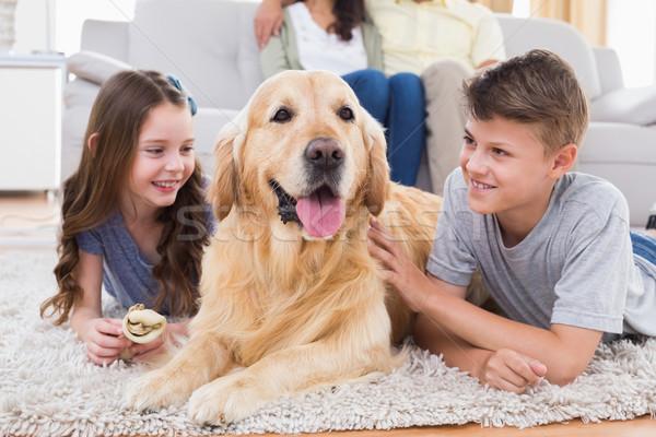 Irmãos cão pais sessão sofá mãe Foto stock © wavebreak_media