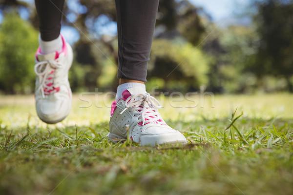 Montare donna jogging parco fitness Foto d'archivio © wavebreak_media