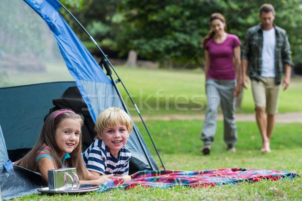 Boldog család park együtt napos idő nő fa Stock fotó © wavebreak_media