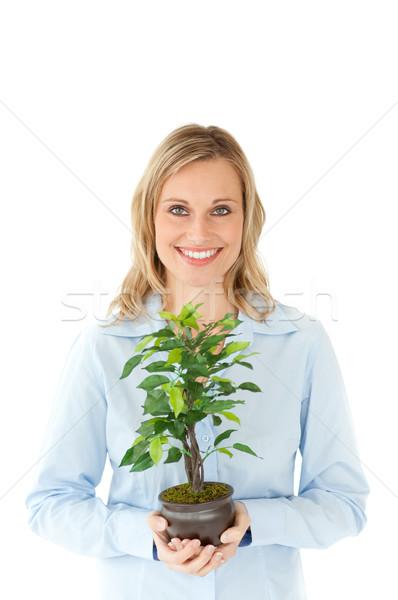 Csinos nő tart növény kezek fehér virág Stock fotó © wavebreak_media