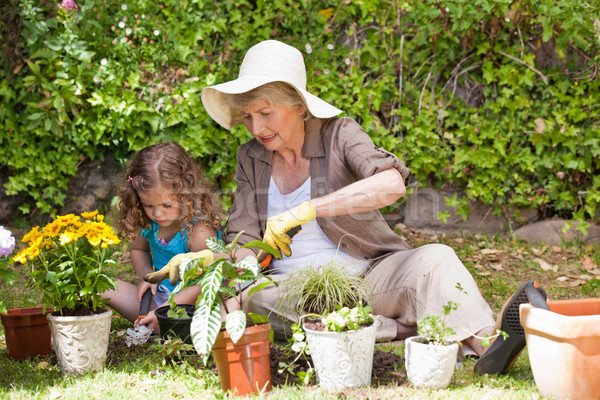 Stock photo: Happy Grandmother with her granddaughter working in the garden