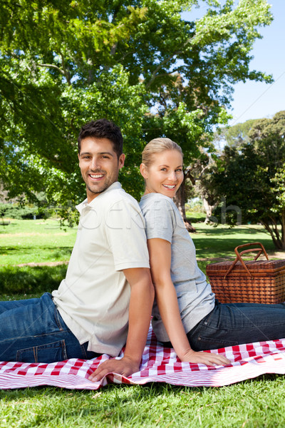 Lovers picnicking in the park Stock photo © wavebreak_media