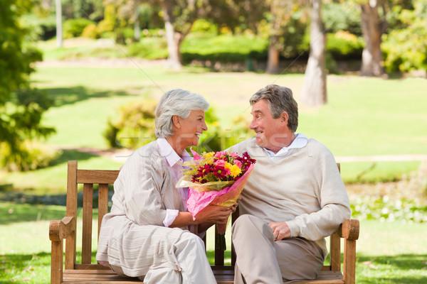 Idős férfi felajánlás virágok feleség nő Stock fotó © wavebreak_media