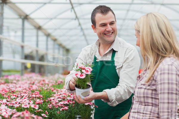 Woman deciding on flower with employee in greenhouse garden center Stock photo © wavebreak_media