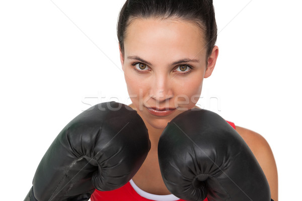 Retrato determinado feminino boxeador Foto stock © wavebreak_media