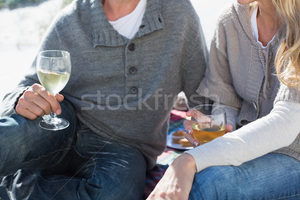 Couple enjoying white wine on picnic at the beach  Stock photo © wavebreak_media