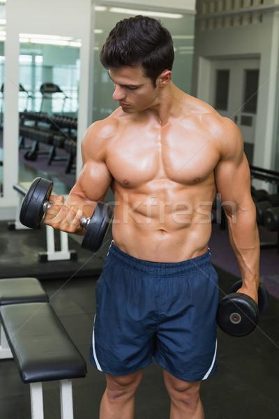 Półnagi muskularny człowiek hantle siłowni Zdjęcia stock © wavebreak_media