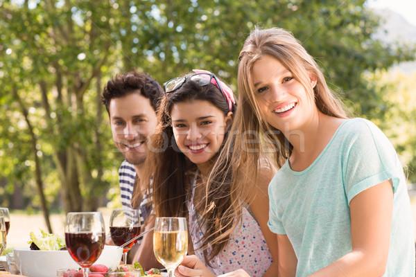 Szczęśliwy znajomych parku obiad charakter Zdjęcia stock © wavebreak_media