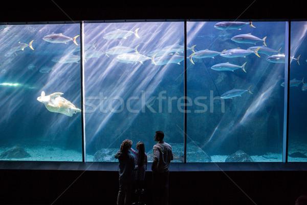 Gelukkig gezin naar vis tank aquarium man Stockfoto © wavebreak_media