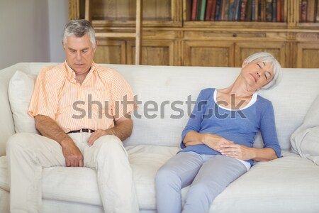Pár nem beszél vitatkozás kanapé otthon Stock fotó © wavebreak_media