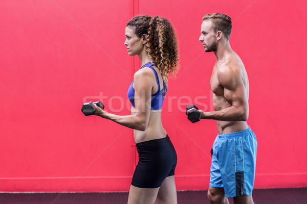 A muscular couple lifting dumbbells Stock photo © wavebreak_media