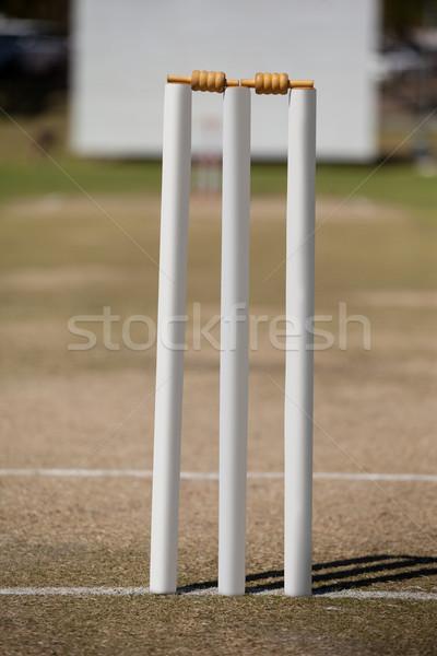 White stumps on cricket field Stock photo © wavebreak_media