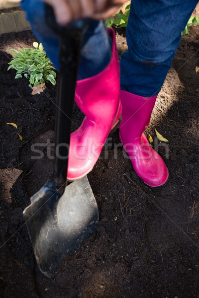 Senior woman gardening at the park on a sunny day Stock photo © wavebreak_media