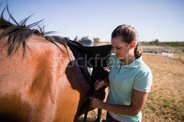 Femenino jockey silla de montar caballo pie campo Foto stock © wavebreak_media