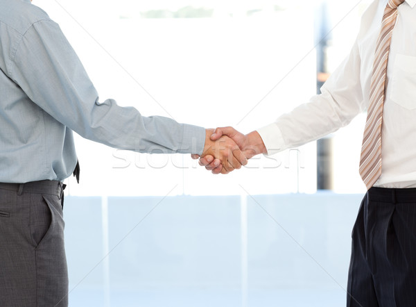 Close up of two businessmen concluding a deal by shaking their hands standing in the office Stock photo © wavebreak_media