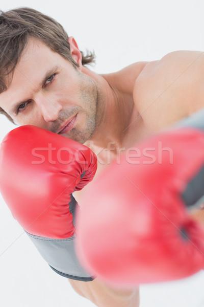 Portré komoly fiatalember piros boxkesztyűk fehér Stock fotó © wavebreak_media