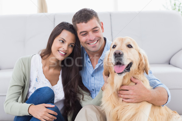 Couple with Golden Retriever in living room Stock photo © wavebreak_media