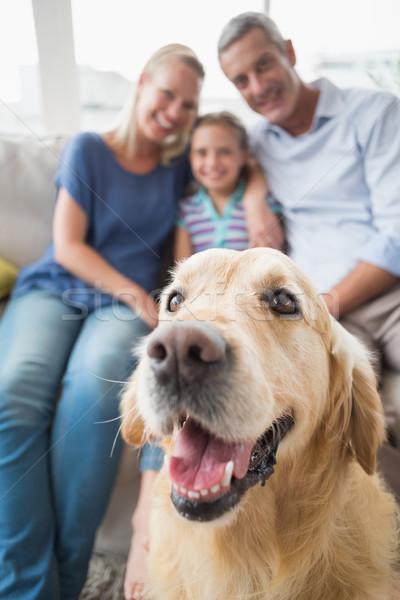 Golden retriever famille heureuse maison maison amour homme Photo stock © wavebreak_media