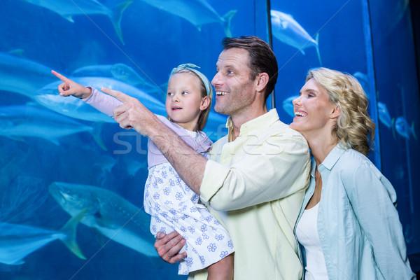 Família feliz olhando peixe tanque aquário mulher Foto stock © wavebreak_media