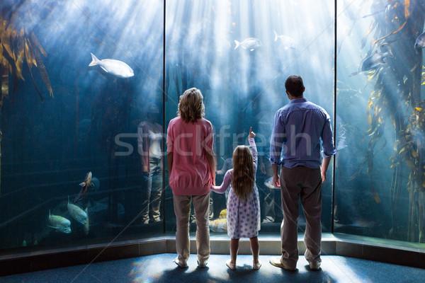 Stock fotó: Fiatal · nő · szülők · mutat · hal · tank · akvárium