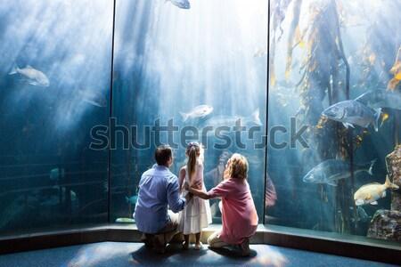 Familia senalando peces tanque hombre nino Foto stock © wavebreak_media