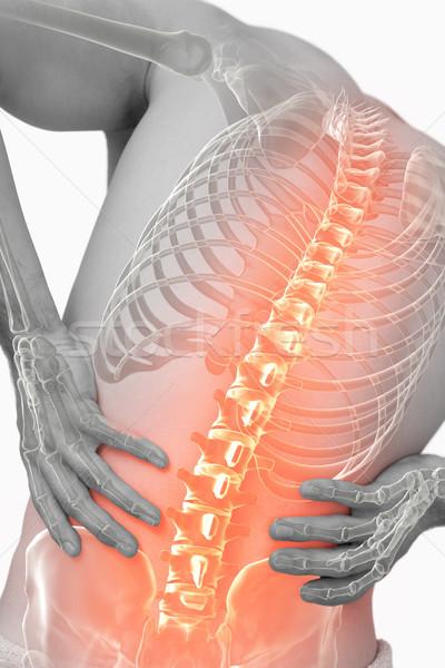 Composito digitale colonna vertebrale uomo mal di schiena bianco squadra Foto d'archivio © wavebreak_media