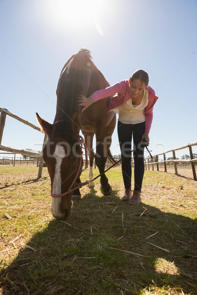 женщину лошади области небе Сток-фото © wavebreak_media